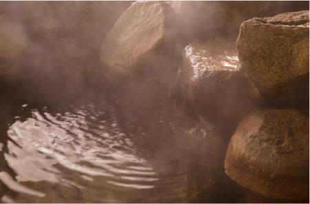 天然温泉 竹の郷